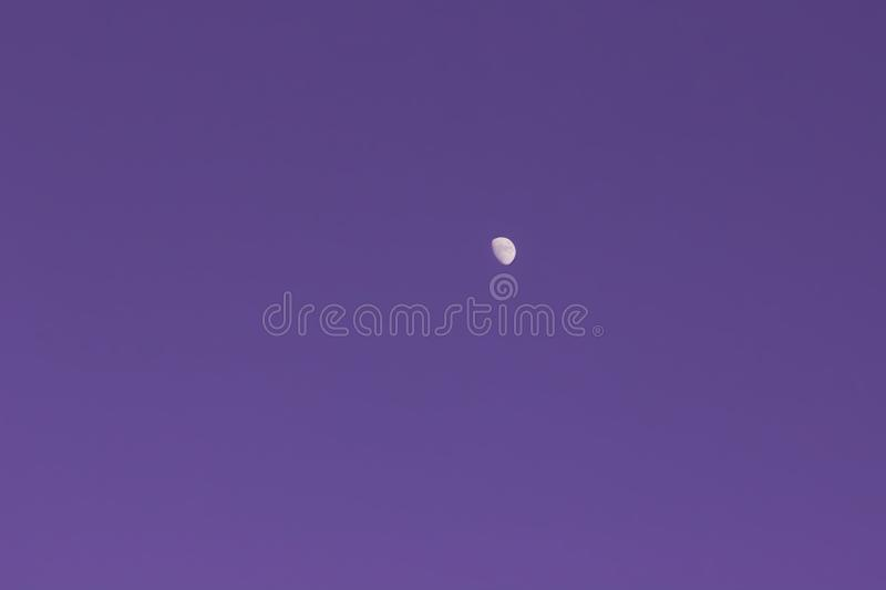 The Moon On The Purple Cloudless Sky royalty free stock photography