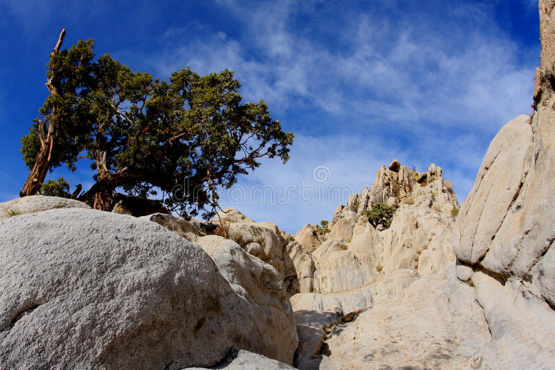 Moon Rocks Nevada stock image