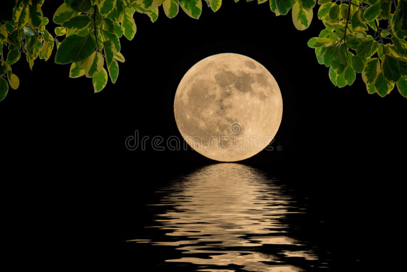 The moon of the sea during. The long nights of the night stock images