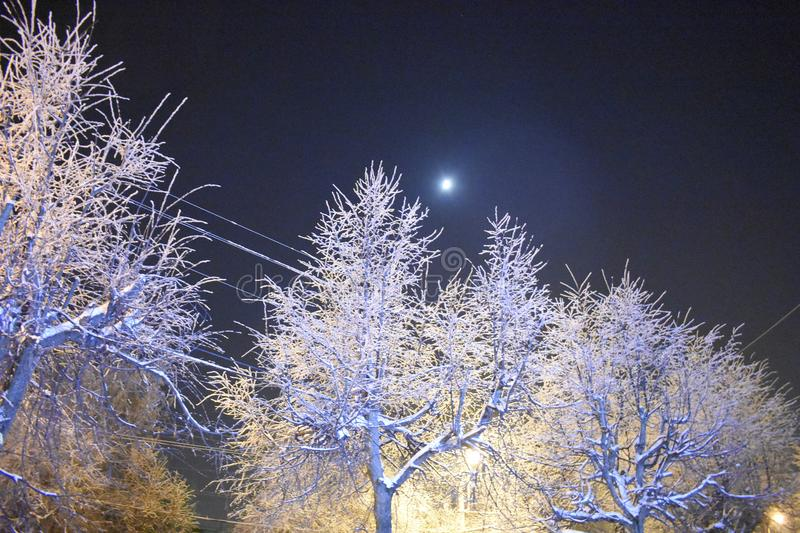The moon in the sky. Street lamp. Night city skyline. Severe frost. Beauty of nature royalty free stock photography