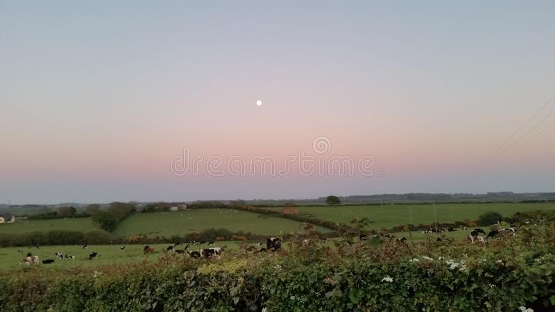Moon and sunset. Full moon and rainbow sunset in the countryside stock photography