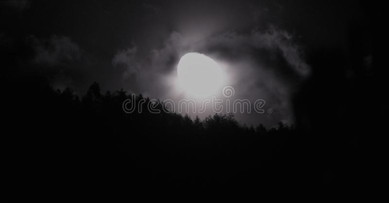 Moon uprise from forest. Moon is comming from forest stock photo