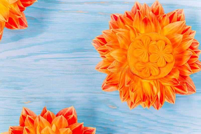 Mooncake en fleur orange fraîche de dahlia sur un fond en bois bleu Nourriture chinoise de festival de mi-automne images libres de droits