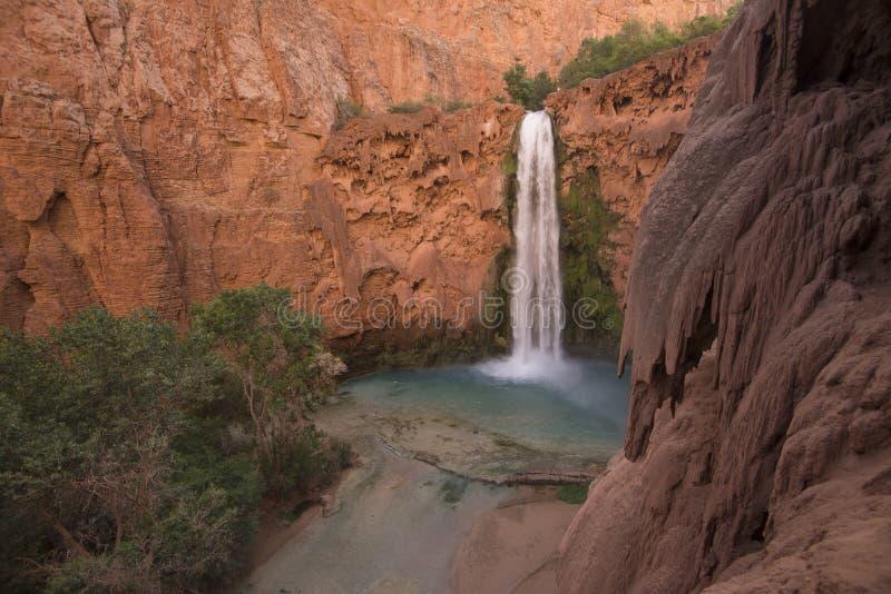 Mooney cai na luz da manhã, reserva indiana de Supai, o Arizona imagens de stock