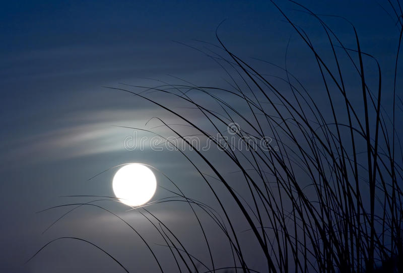 Moonlight. In Nam Dinh, Vietnam royalty free stock photography