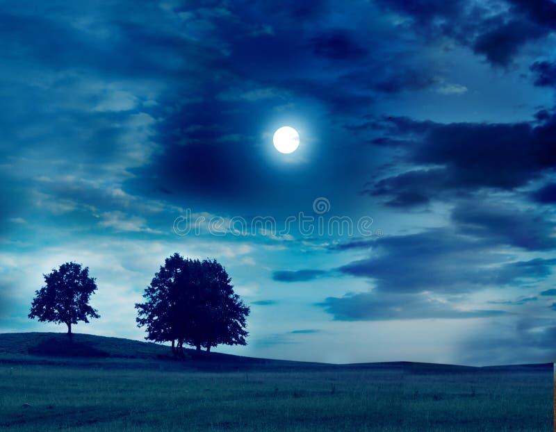 Moonlight landscape stock image