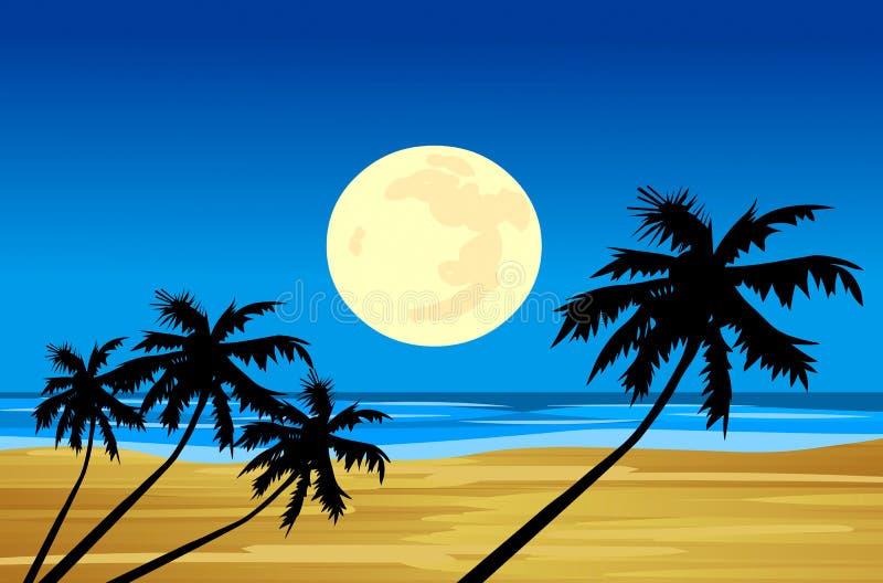 Moonlight sea beach vector illustration