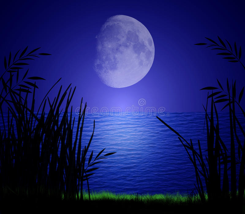 Download Moonlight on Water stock illustration. Illustration of grass - 14856452