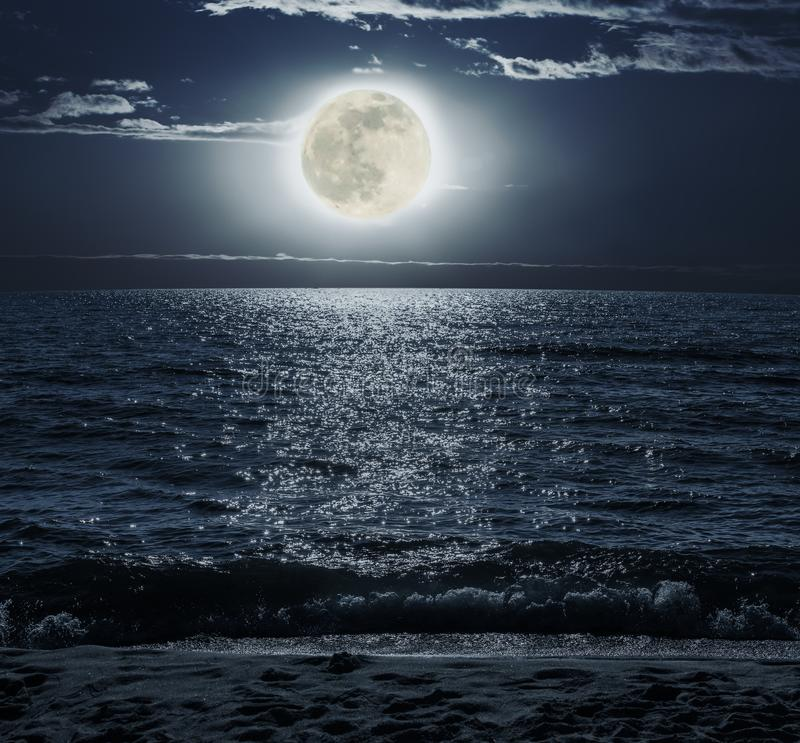 Moonlit Night over the Sea. On a sandy beach royalty free stock image