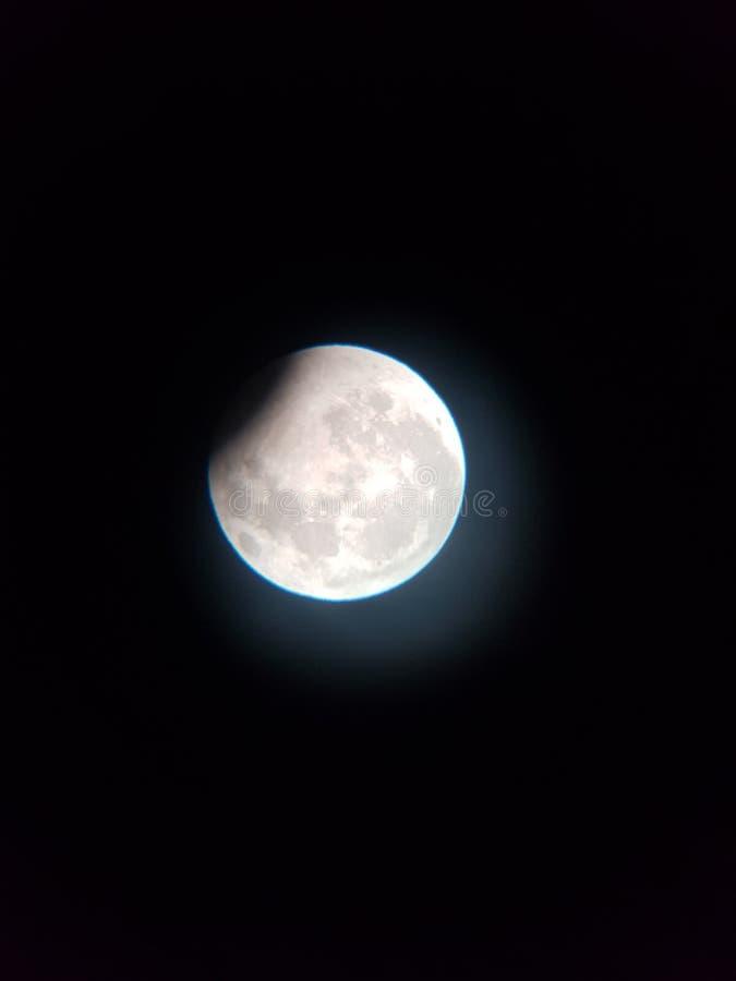 Moonofwolf för redmoon för månesupermoonwolftime royaltyfri fotografi