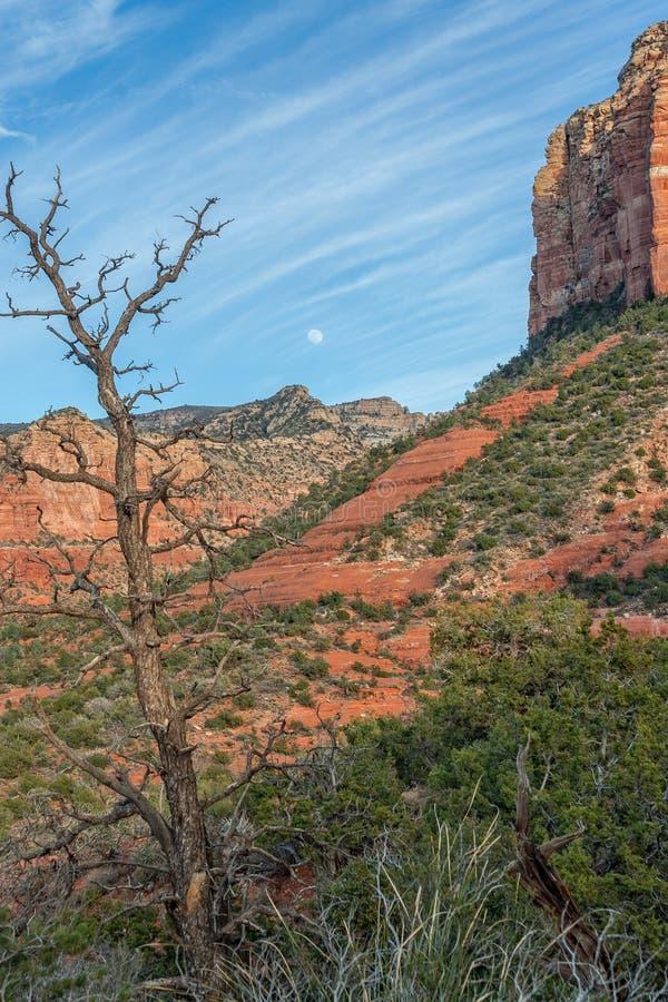 Moonrise über roten Felsen stockfotos