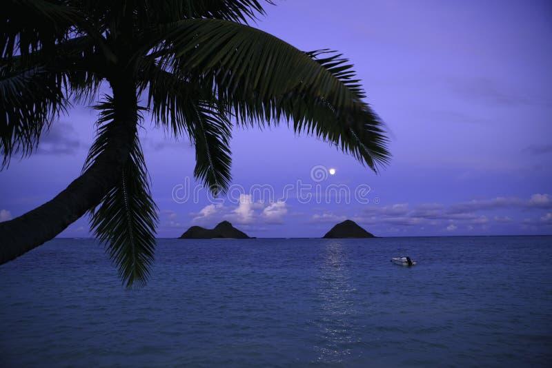 moonrise Гавайских островов стоковое изображение rf
