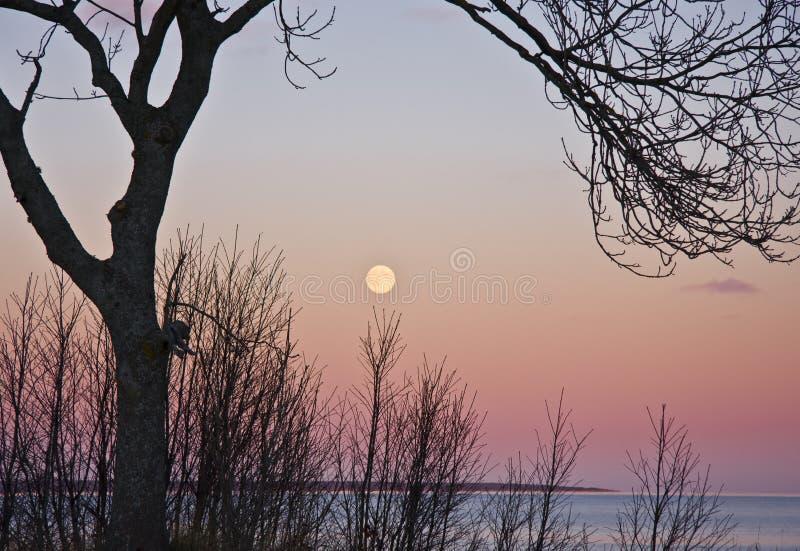 moonrise arkivbilder