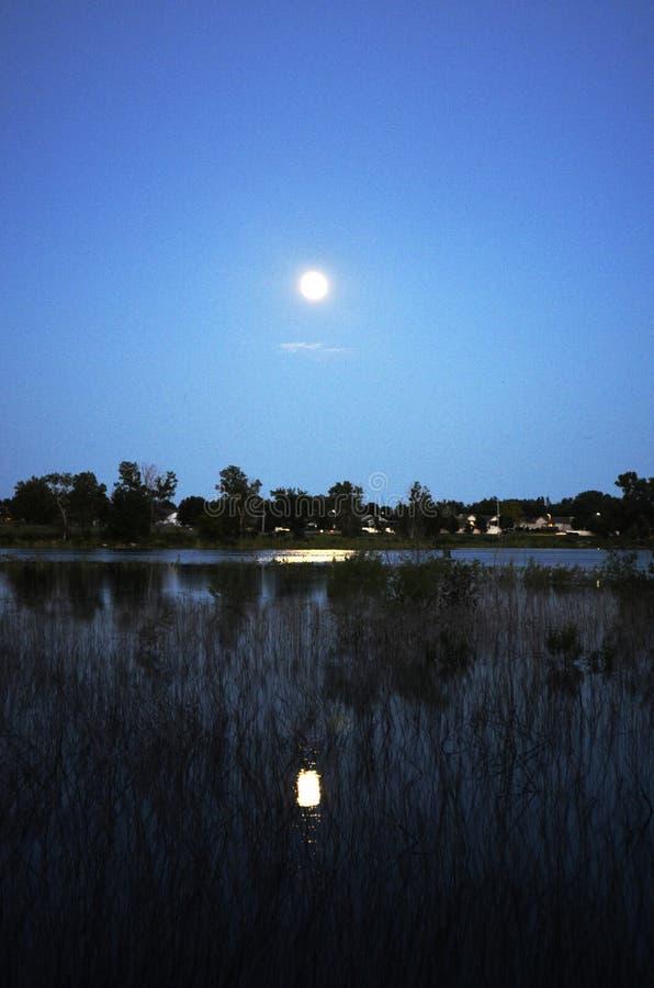 moonrise stock foto