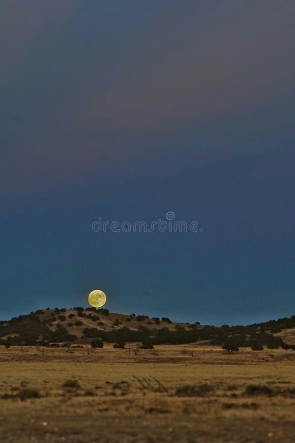 moonrise fotografia de stock royalty free