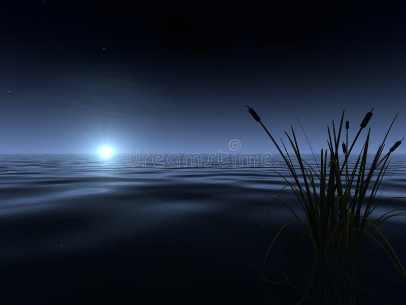 Moonrise bij het Meer royalty-vrije illustratie