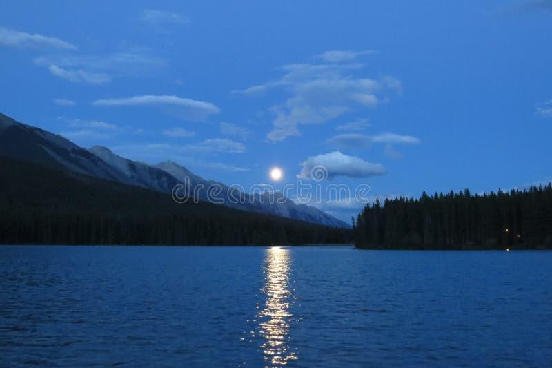 Moonrise stock image