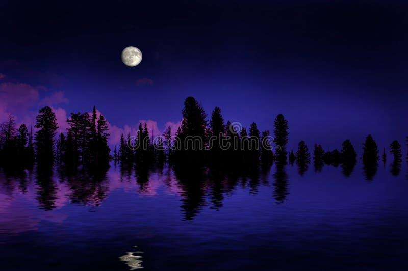 Moonrise da floresta imagem de stock