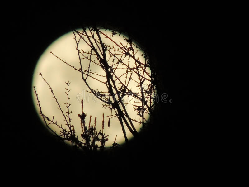 Moonrise stock photography