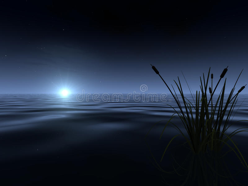 Moonrise at the Lake stock image