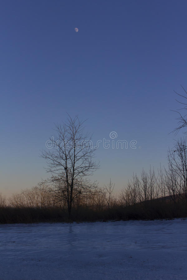 Moonrise over snow royalty free stock image