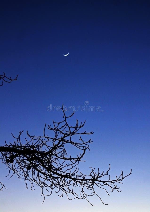 Moonrise, San Diego, Kalifornien stockfotos
