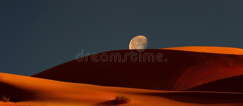 Moonrise sopra le dune immagine stock