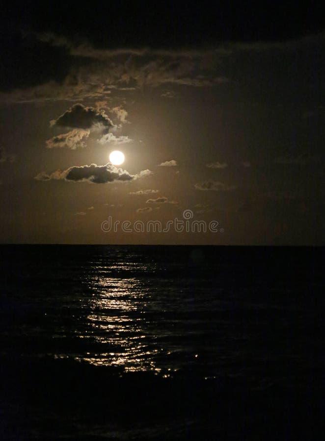 Moonrise - Vertikale lizenzfreies stockbild