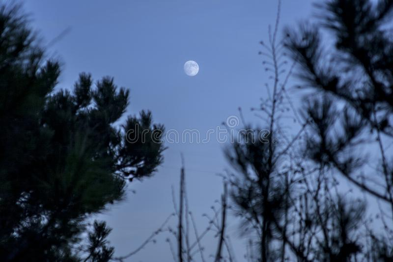 The moonrise on a winter afternoon stock photo