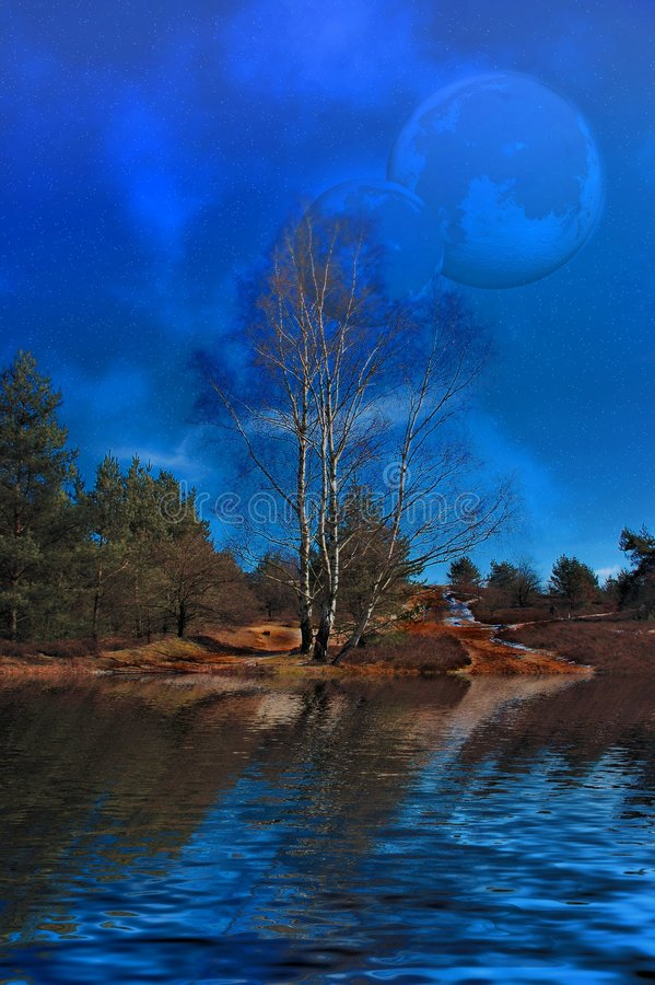 Moons over the swamp. stock illustration