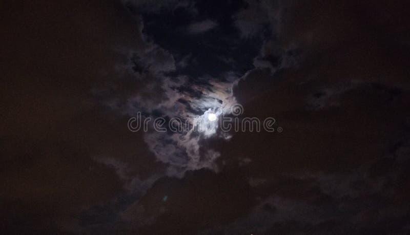 Moonshadow obrazy royalty free