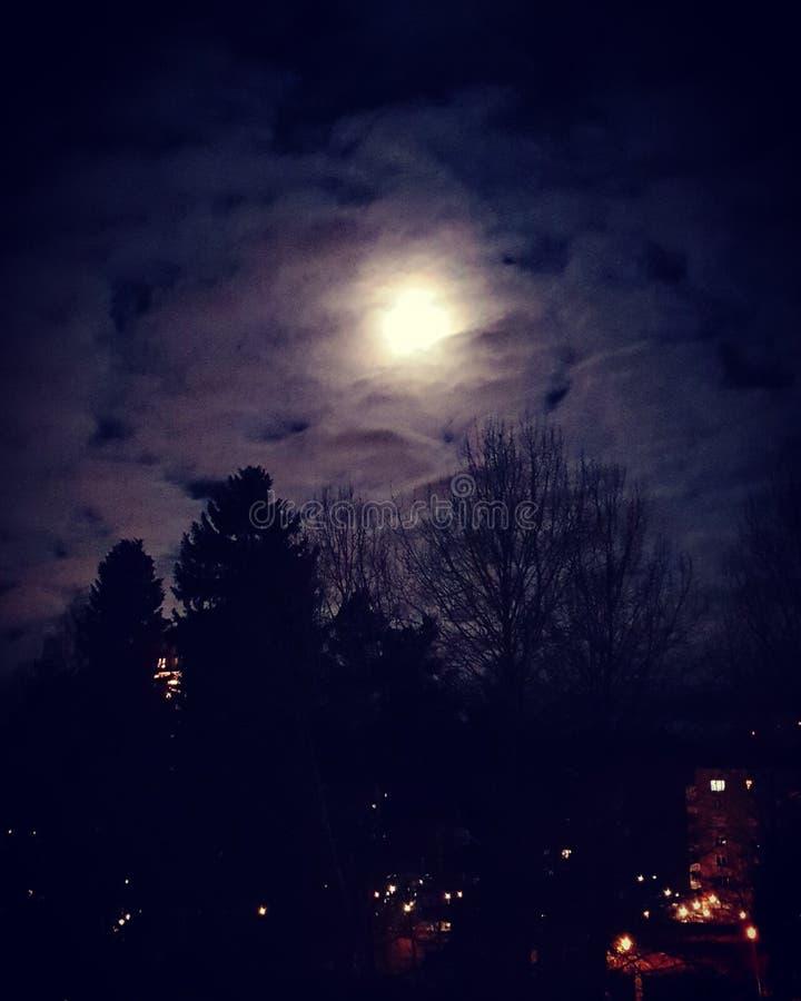 moonshine fotografia stock