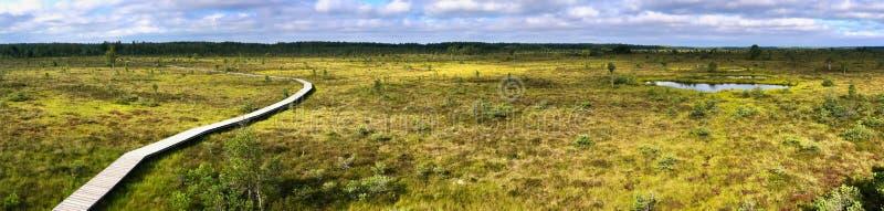 Moor in Litauen stockfoto