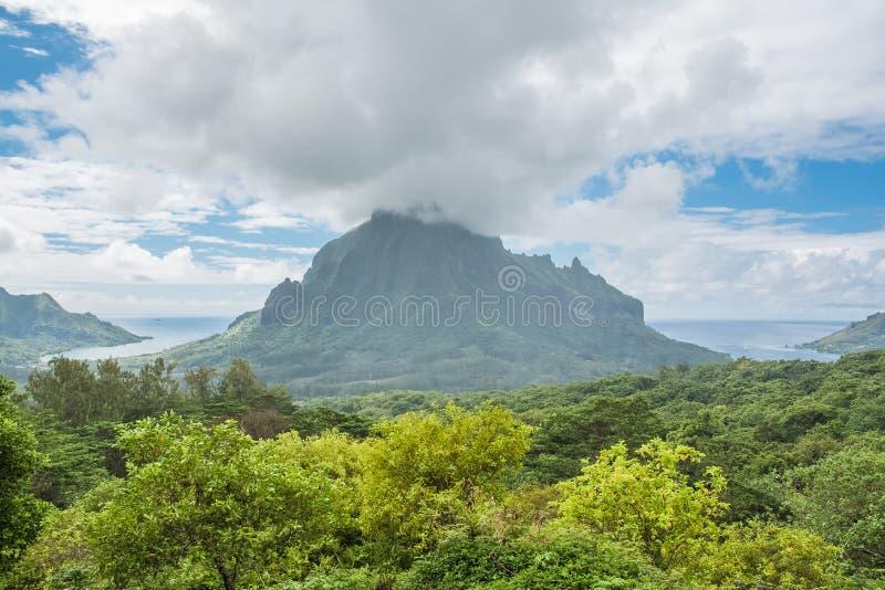 Moorea в полинезии, бельведере Opunohu стоковые фотографии rf