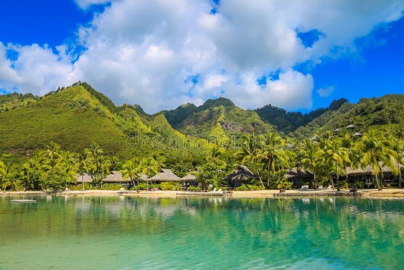 Moorea, francuz Polynesi zdjęcie stock