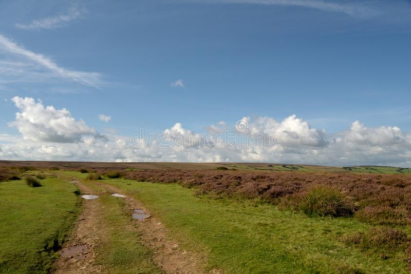 Moorland nad Doone dolina, Exmoor, Północny Devon fotografia stock