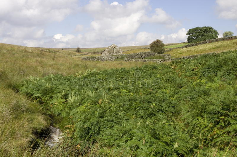 Moorland Scene and Shepherds Shelter