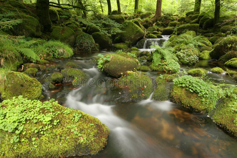 Moorland stream. A stream on Dartmoor. Long exposure stock photos