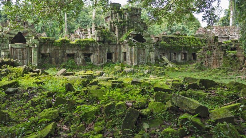 Moos bedeckte Steine von Angkor Wat Tempeln in Kambodscha lizenzfreie stockbilder