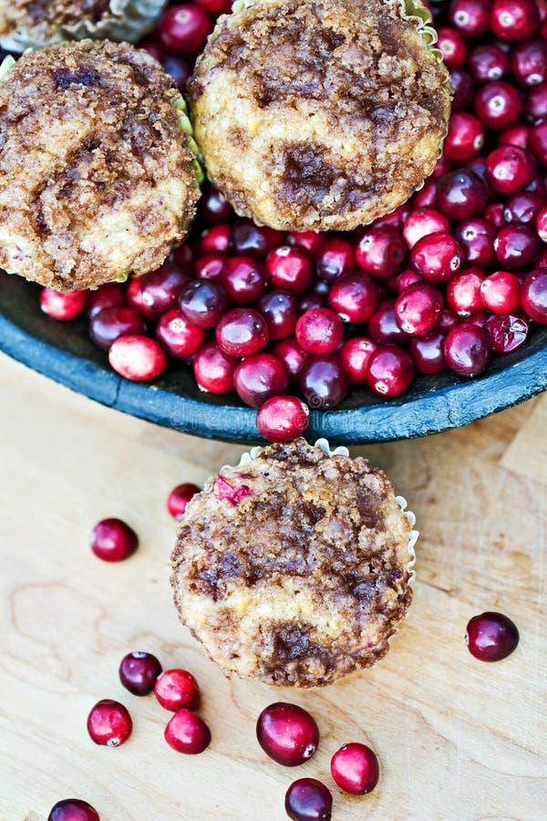 Moosbeere-Muffins stockbild