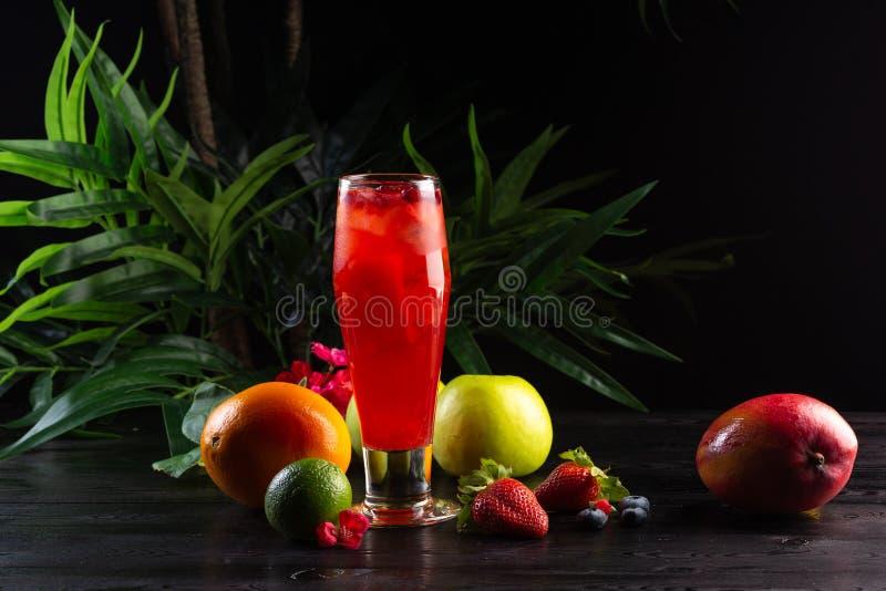 Moosbeerlimonade - Lingonberries in einem Krug und ein Glas und Fr?chte auf einem dunklen Hintergrund stockbild