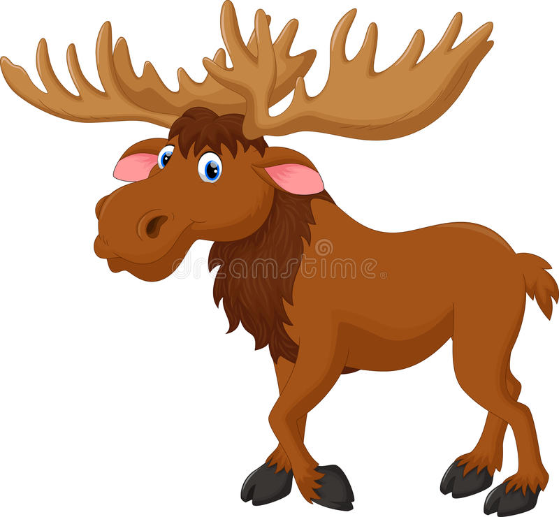 Moose cartoon stock illustration
