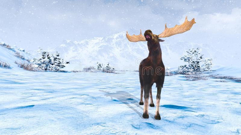 Moose. 3D CG rendering of moose stock photography