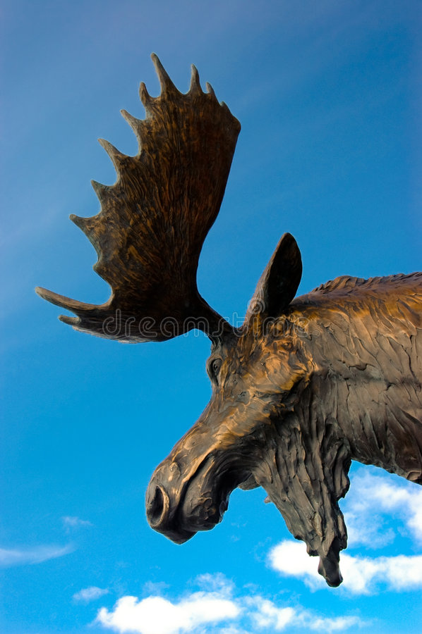Moose Head. A metal sculpture of a moose stock photos