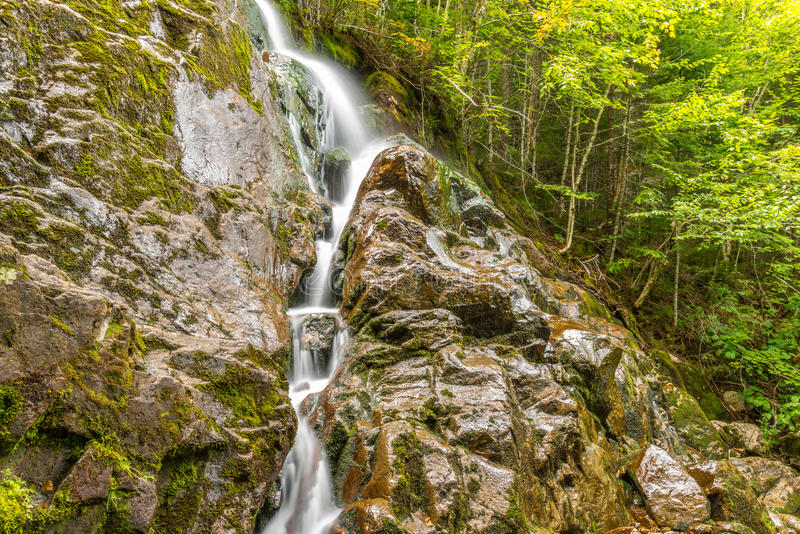 Moose Horn Trail Fall. (Fundy National Park, New Brunswick, Canada stock photo