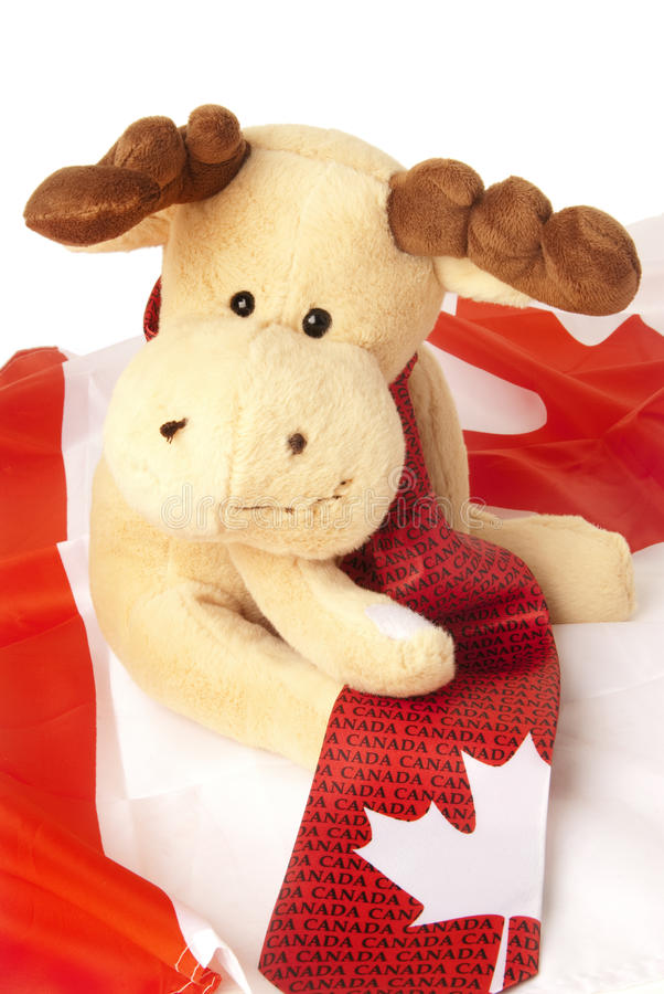 Download Moose Seating On A Canadian Flag Stock Photo - Image: 23280590