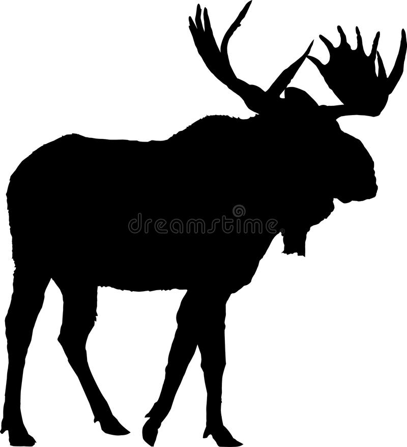 Moose Silhouette Original Vector Illustration stock photography