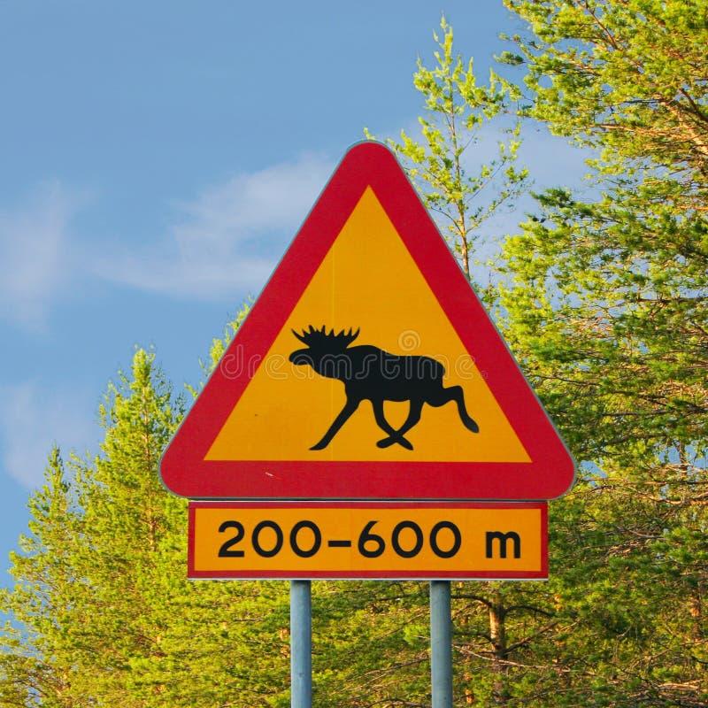 Moose Warning Traffic Sign stock photos