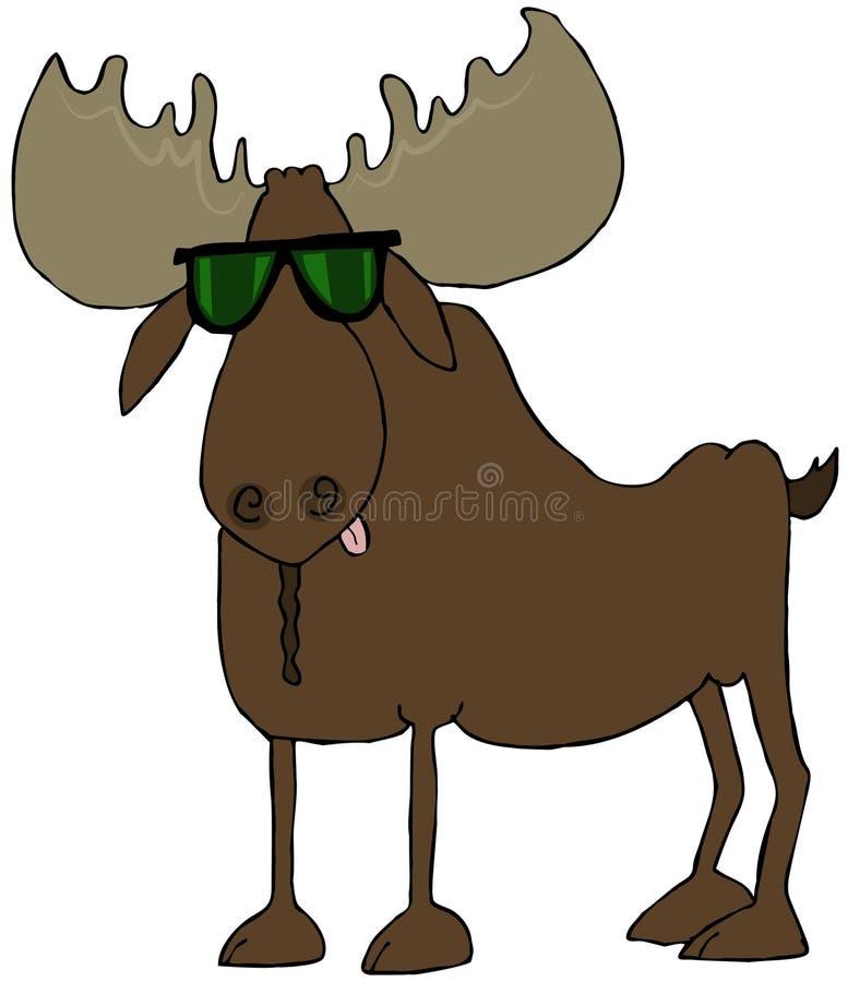 Download Moose Wearing Sunglasses Stock Photo - Image: 31664600