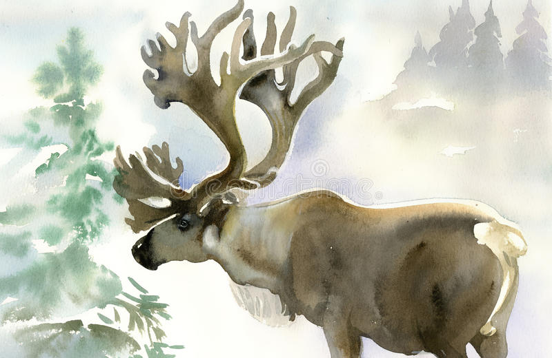 Moose in winter forest stock illustration